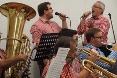 Großes Blasorchester Musikverein Mühlacker (Foto: Manfred Müller)